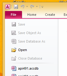 Microsoft Access File Open Menu